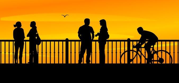 bridge-893200_960_720