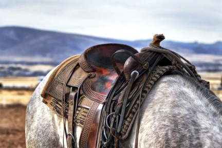saddle-419745_960_720