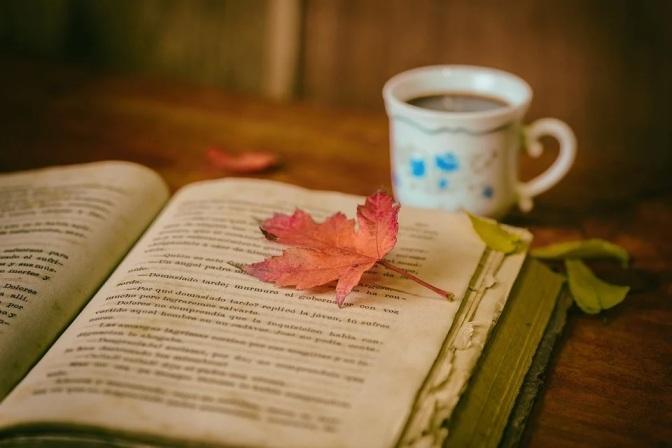 Herbstzeit = perfekte Lesezeit